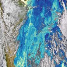 Ocean Microbes Alter Skies?