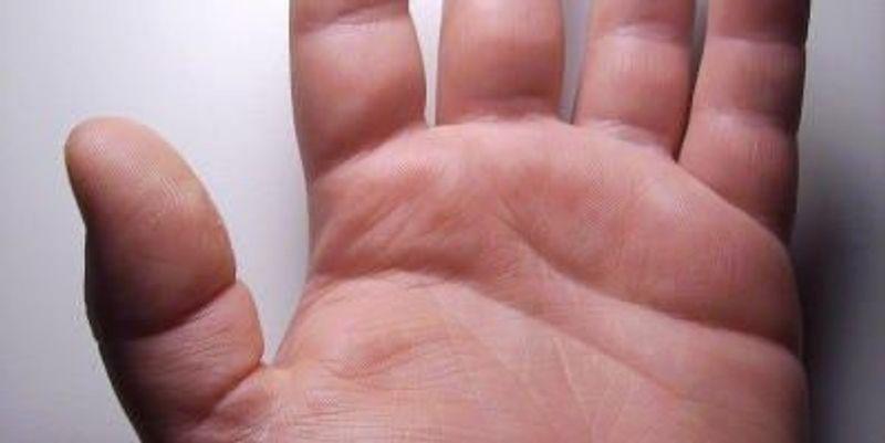 Our Primitive Hands