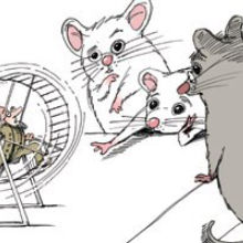 When Does a Smart Mouse Become Human?