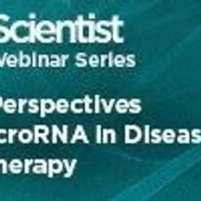 New Perspectives on microRNA in Disease and Therapy