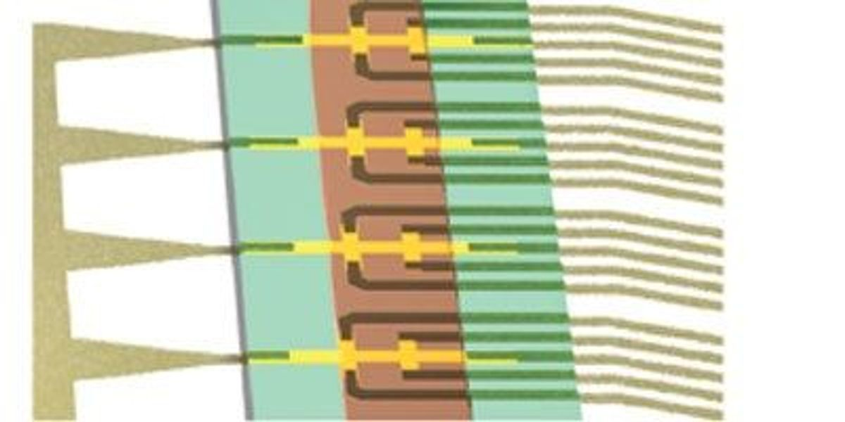 Flow Cytometry On-a-Chip   The Scientist Magazine®