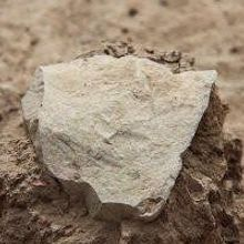 Oldest Stone Tools Discovered