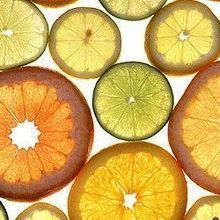 Citrus History