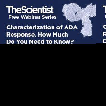 Characterization of ADA response. How much do you need to know?