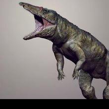 """Carolina Butcher"" Prowled Triassic North America"
