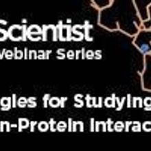 Strategies for Studying Protein-Protein Interactions