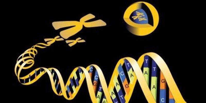 23andMe Enters Drug Development