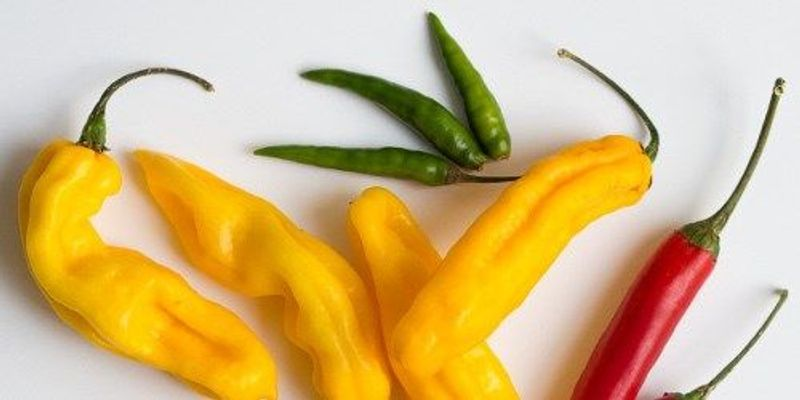 How Hot Peppers Can Ease Pain