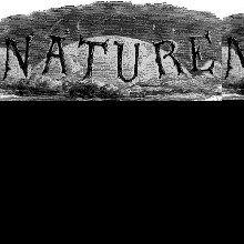 <em>Nature</em> Opens the Archives