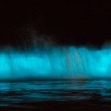 Image of the Day: Glowing Tide