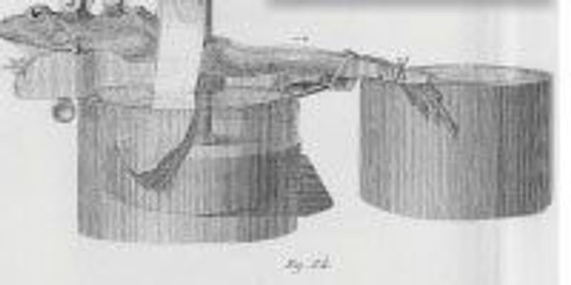 The Body Electric, 1840s