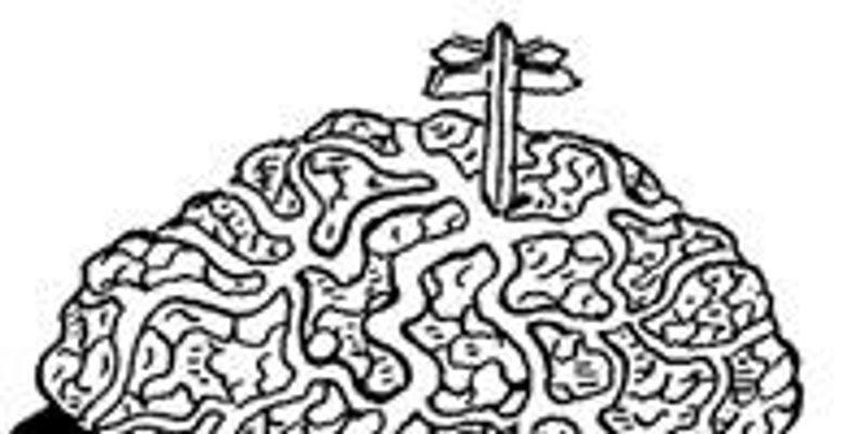 Cerebral Sleuths