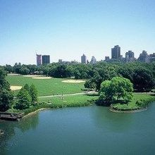Soil Microbiome of Central Park