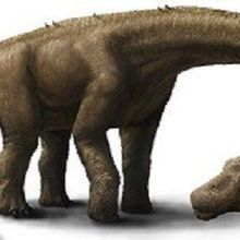 Humongous Herbivorous Dinosaur