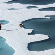 Arctic Expansion