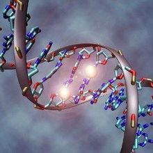 Methylation Tied to Alzheimer's