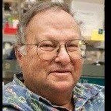 Molecular Neuroscientist Dies