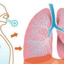 Breathing Life into Lung Microbiome Research