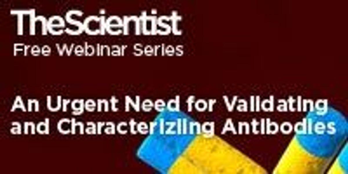 Validating antibodies
