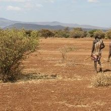 Diverse Microbes in Hunter-Gatherers' Guts