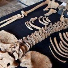 Bones Tell Black Death Story