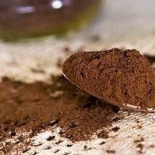 Gut Microbes Gobble Cocoa