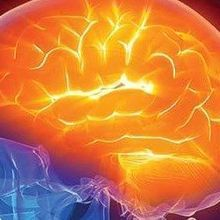NIH Marks Millions for Brain Injury