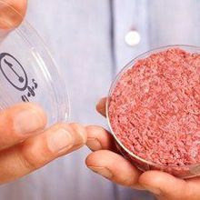 Lab-Grown Burger Taste Test