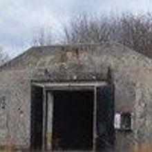 Bunker Bats