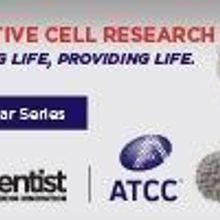 Innovative Cell Research