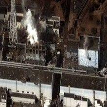 Fukushima Chief Dies