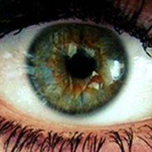 Genes Get in Your Eye