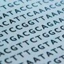 Supreme Court OKs DNA Collection on Arrest