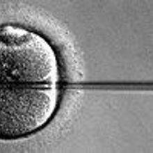 Nobel Laureate and IVF Pioneer Dies