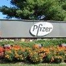 Pfizer Scientist Dies
