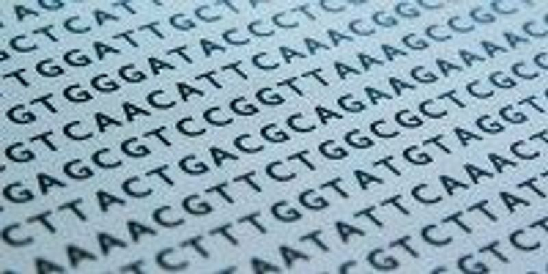 DNA-based Data Storage Here to Stay | The Scientist Magazine®