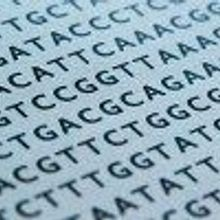 DNA-based Data Storage Here to Stay