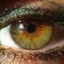 Detailing Color Vision