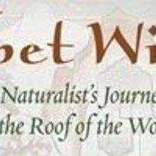 Book Excerpt from Tibet Wild