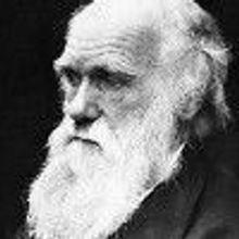 Charles Darwin for Congress