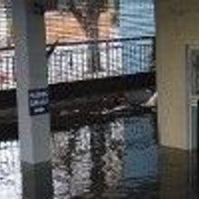 Help for Sandy-Stricken Scientists