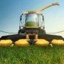 Better Biofuel Crops