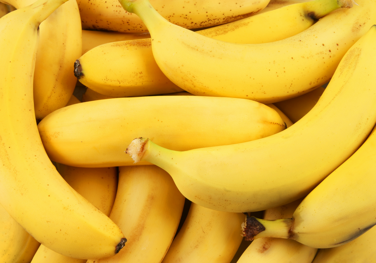 The Beginning of the End for Bananas? | The Scientist Magazine®