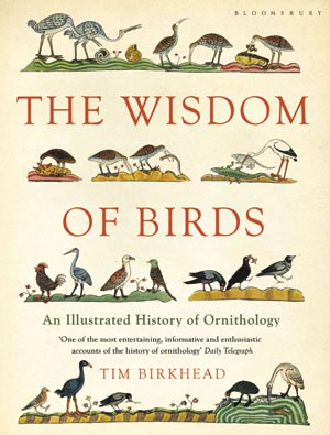 Book excerpt from the wisdom of birds the scientist magazine fandeluxe Image collections