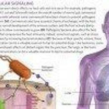 Intestinal Molecular Signaling