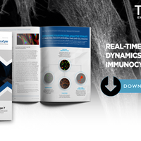eBook: Real-Time Protein Dynamics With Live-Cell Immunocytochemistry