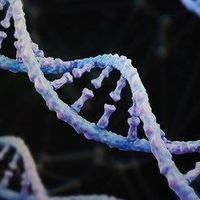 Novel Method Could Accelerate DNA Synthesis