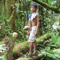 Amazonians Offer Clues to Human Childhood Development