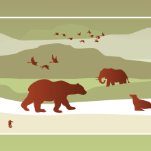 Infographic: How to Predict If a Species Is At Risk