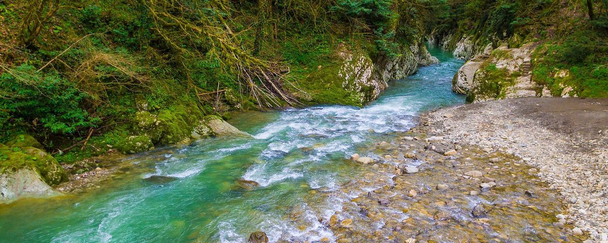 Rivers And Streams Compose Much More Of Earth S Surface Than Thought The Scientist Magazine